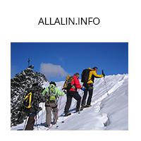 Allalin